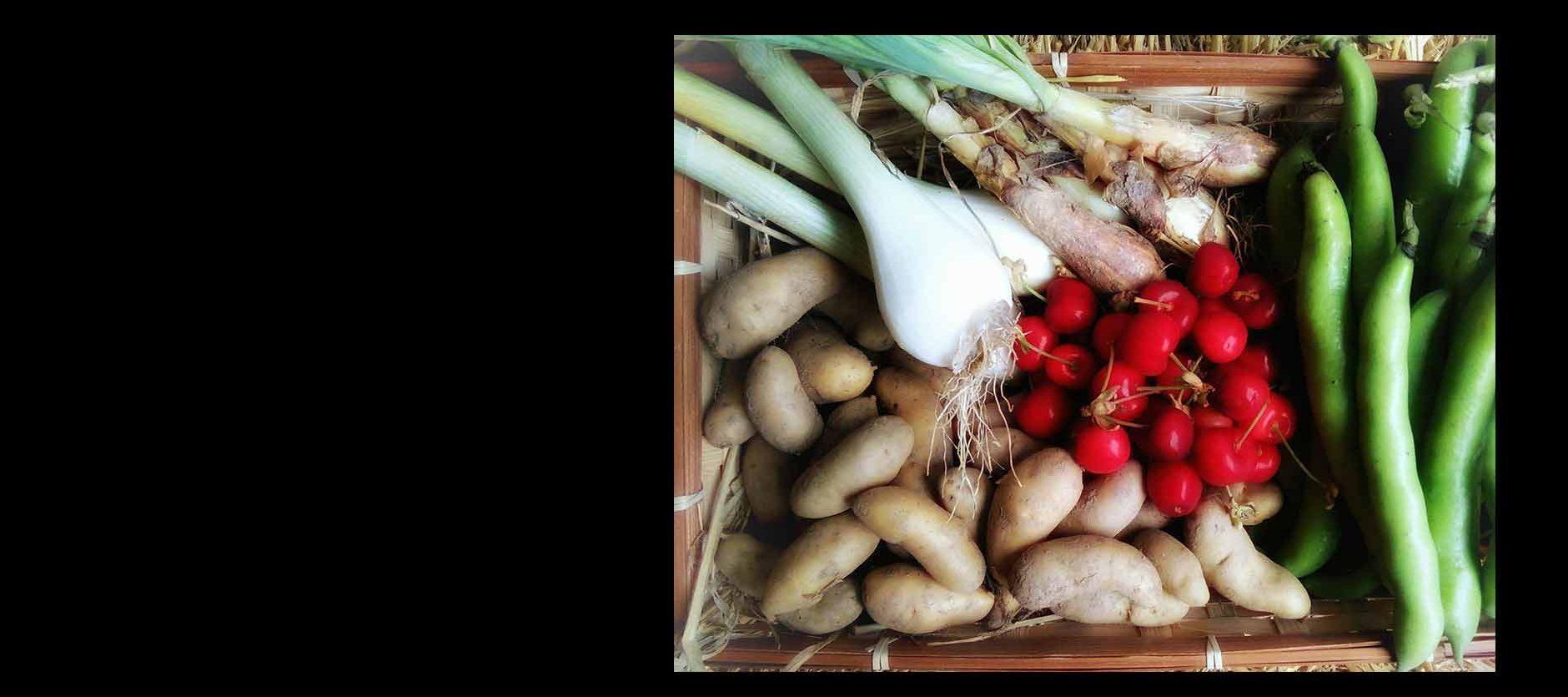 Légumes au prix libre
